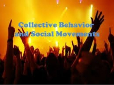 كۆره‌فتار (Collective Behavior)